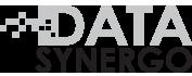 Data Synergo